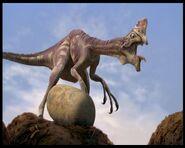 Oviraptor di Dinosauri