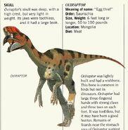 Oviraptor Dinosaur Worlds