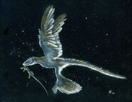 Moonlight hunt microraptor