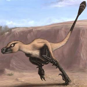 New Discovery Linheraptor.jpg
