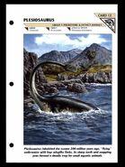 Wildlife fact file Plesiosaurus front