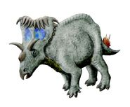 Kosmoceratops NT