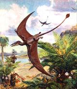 Pterosaur rhamphorhynchus by zdenek burian 1960
