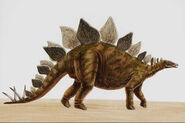 Stegosaurus055