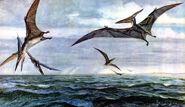 Pteranodon by zdenek burian 1960