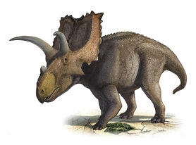 Coahuilaceratops-magnacuerna-sergey-krasovskiy.jpg
