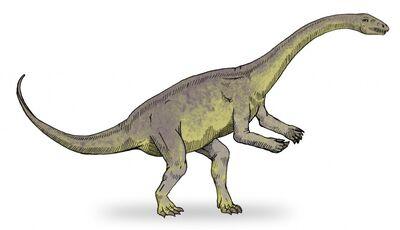 Chebsaurus.jpg