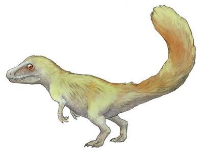Sciurumimus.jpg
