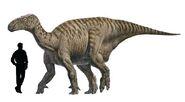 Iguanodontamaño