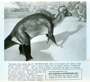 Jonas Studios 1964 World's Fair Corythosaurus