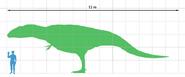 Giganotosaurus scale