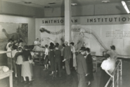 Camarasaurus in the Smithsonian Institution 1
