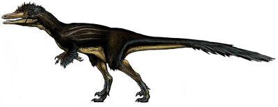 Austroraptor.jpg