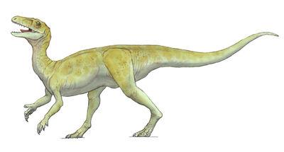 Guaibasaurus.jpg