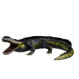 Purrusaurus.png