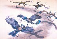Hallett-bird-evolution1-1000x692