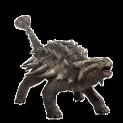 Anklyosaurus header copia.png