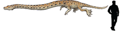 Tanystropheus.png
