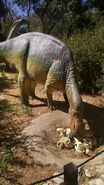 George s eccles dinosaur park maiasaura by dinolover09 dcoo6z1-fullview