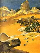 Protoceratops Album of Dinosaurs