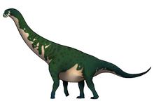 Gigantosaurus Megalonyx.png