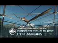 Species Field Guide - Pteranodon - Jurassic World Evolution 2