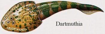 Dartmuthia.jpg