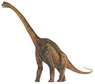 Malawisaurus.jpg