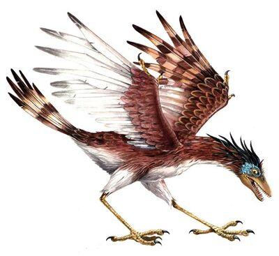 Sinornis.jpg