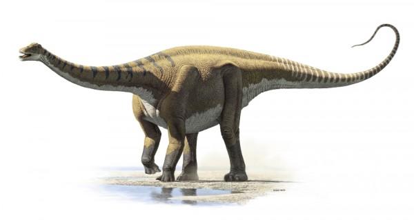 Demandasaurus