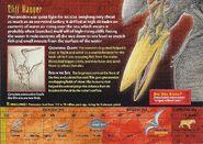 Pteranodon back