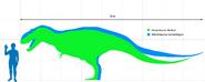 Albertosaurinae scale