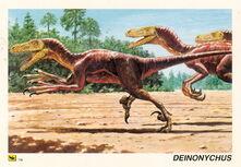 Deinonychus-card