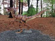 Dinoland velociraptor