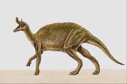 Lambeosaurus047