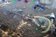 Boneyard mammoth dig site by maastrichiangguy ddnv7km-fullview