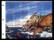 Wildlife fact file Pteranodon inside