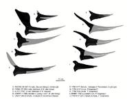 Pteranodonts