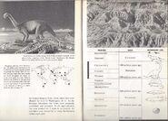 RARE Vintage 1957 World Dinosaurs Smithsonian Book Paleontology Natural History 12