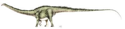 Diplodocus2.jpg