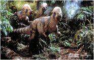 Pachycephalosaurus group