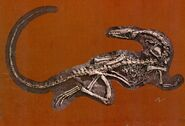 Coelophysis-postcard-700x476
