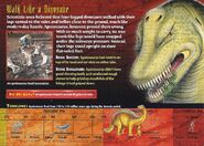 Apatosaurus back