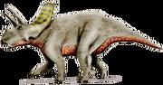 Arrhinoceratops.png