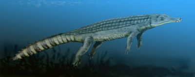 Chenanisuchus.jpg