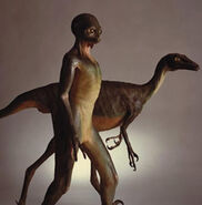 Troodon dinosauroid