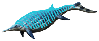 Shastasaurus.png