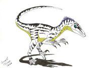 Velociraptor mongoliensis by Dino master