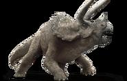 JW triceratops