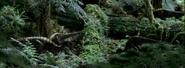 0240 Leaellynasaurua Walking With Dinosaurs